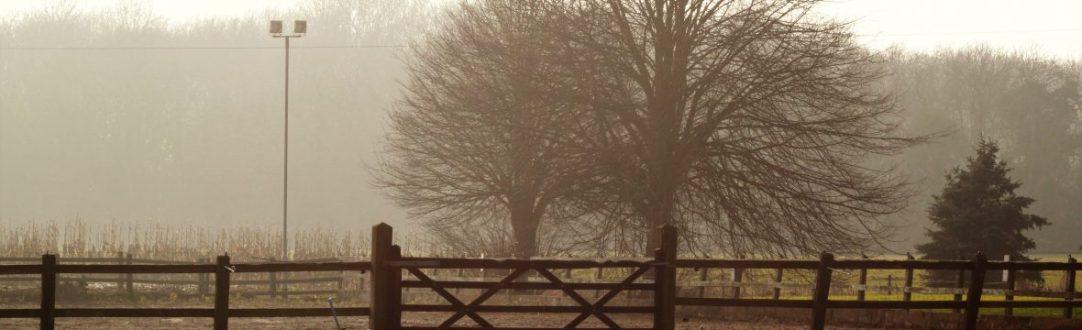 Suffolk morning